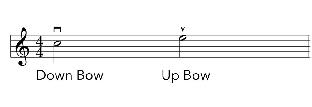 Up Bow vs Down Bow .jpg