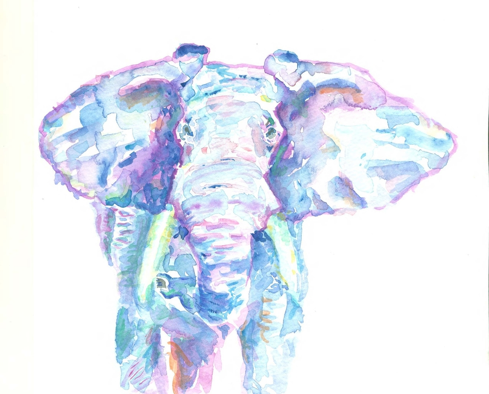 WatercolorForElephants.jpg