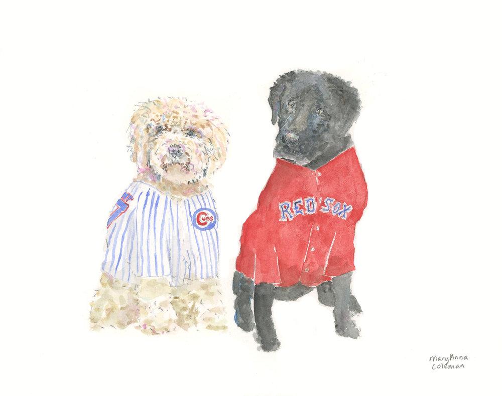 Dogs Baseball.jpg