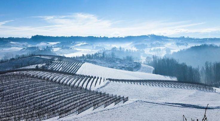 Wijngaarden+Yoga+Wintersport.jpeg
