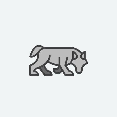 SILVER-WOLF.jpg