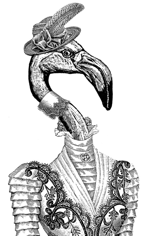 FlamingoWoman.jpg