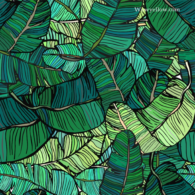banana leaves.jpeg