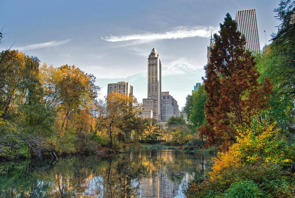 el Central Park, el pulmón de Nueva York.