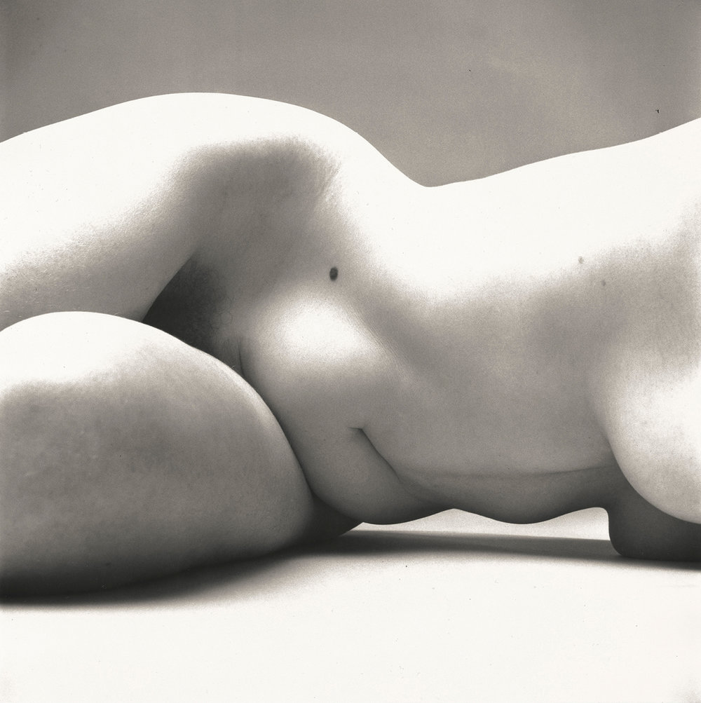 Irving Penn (American, 1917–2009) · Nude No. 72, New York, 1949–50. Gelatin silver print · 15 5⁄8 × 14 3⁄4 in. (39.7 × 37.5 cm).