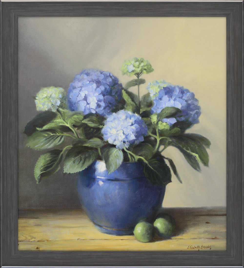 hydrangeas in a blue pot