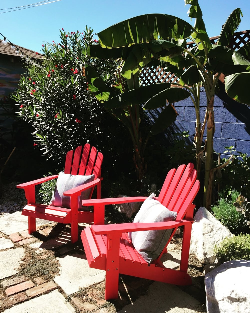 The back patio and banana garden at the Hyde Park house.