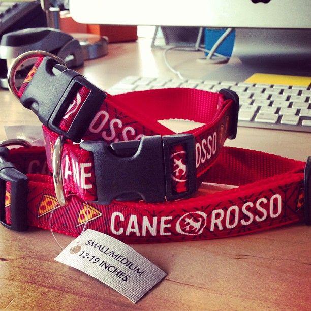 38 Cane Rosso Dog Collar Design.jpg