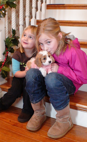 Girls with Hybrid Puppy