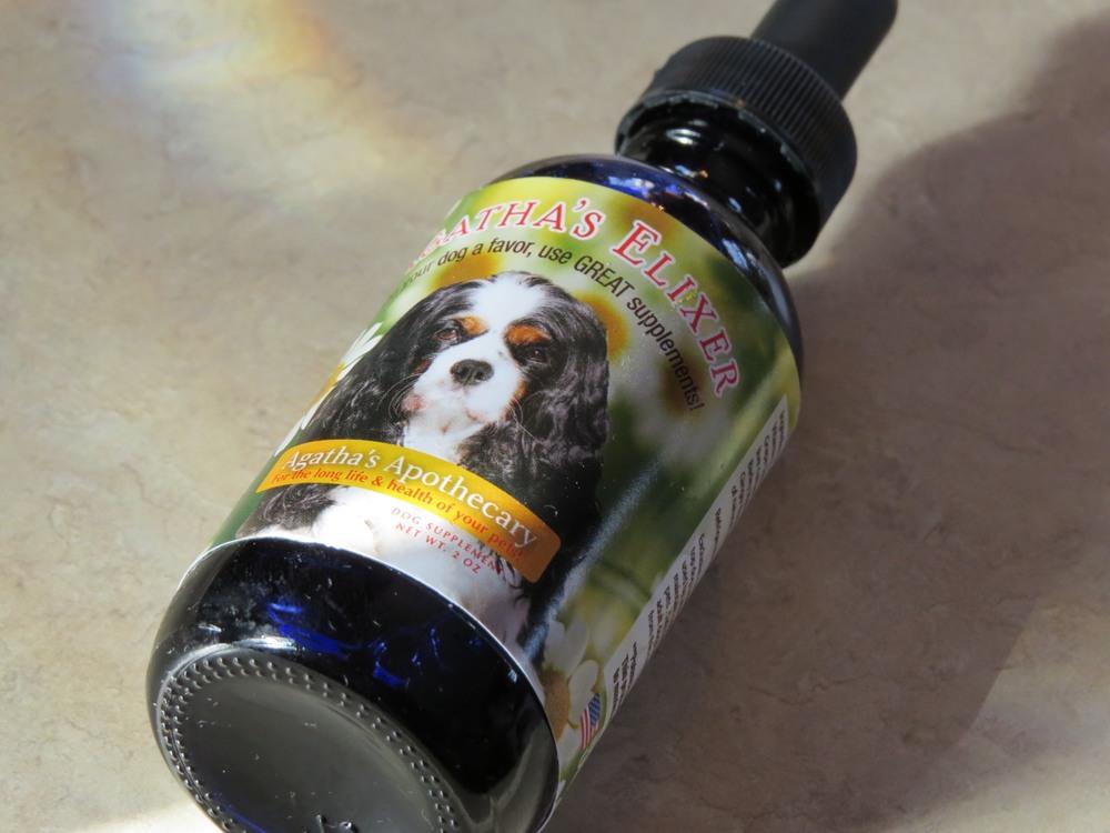 Agatha's Elixir Cavachon Puppy Care