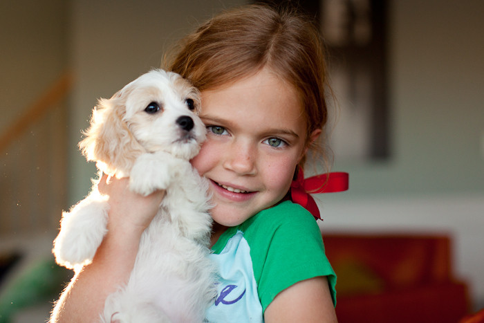 Girl-with-Cavachon