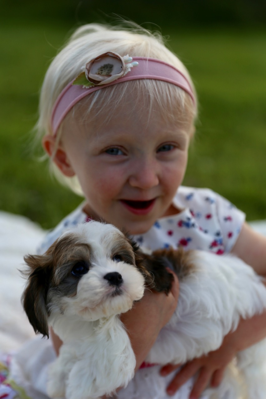Clara Rose & Cavachon Puppy Friend