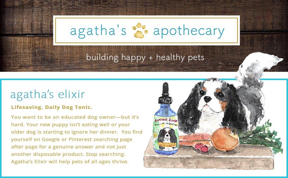 Agatha's Apothecary Elixir
