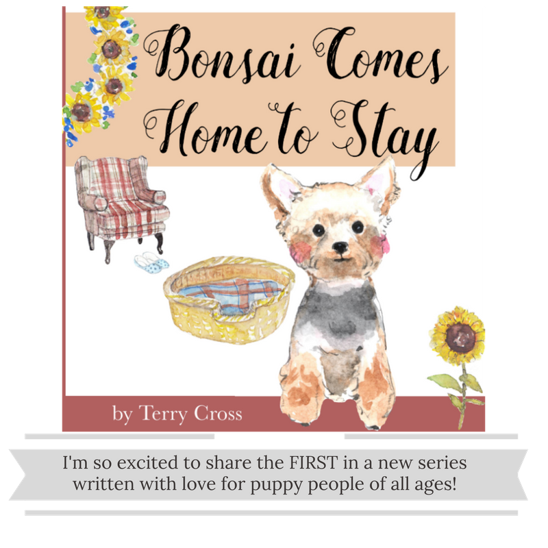 Bonsai Comes Home To Stay.png