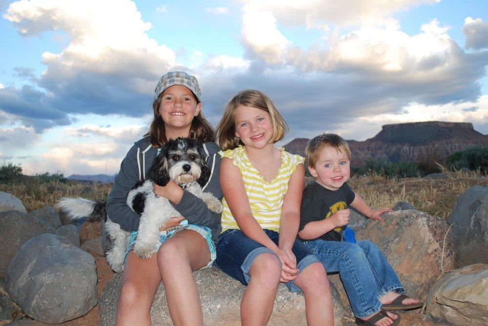 Tri-Color Cavachon and Family