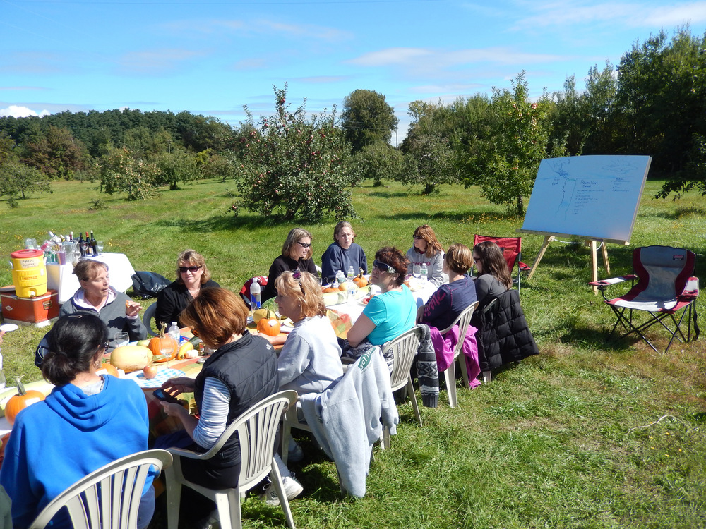 in 2012, we surprised our team by setting up a fabulous picnic in a patient's orchard and there we spent a day having a team meeting and planning for the coming year.