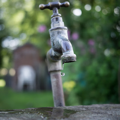 Twyford Allotments – Leaky Tap, 2012 © Graham Dew