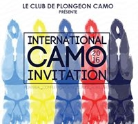Camo Logo.jpg