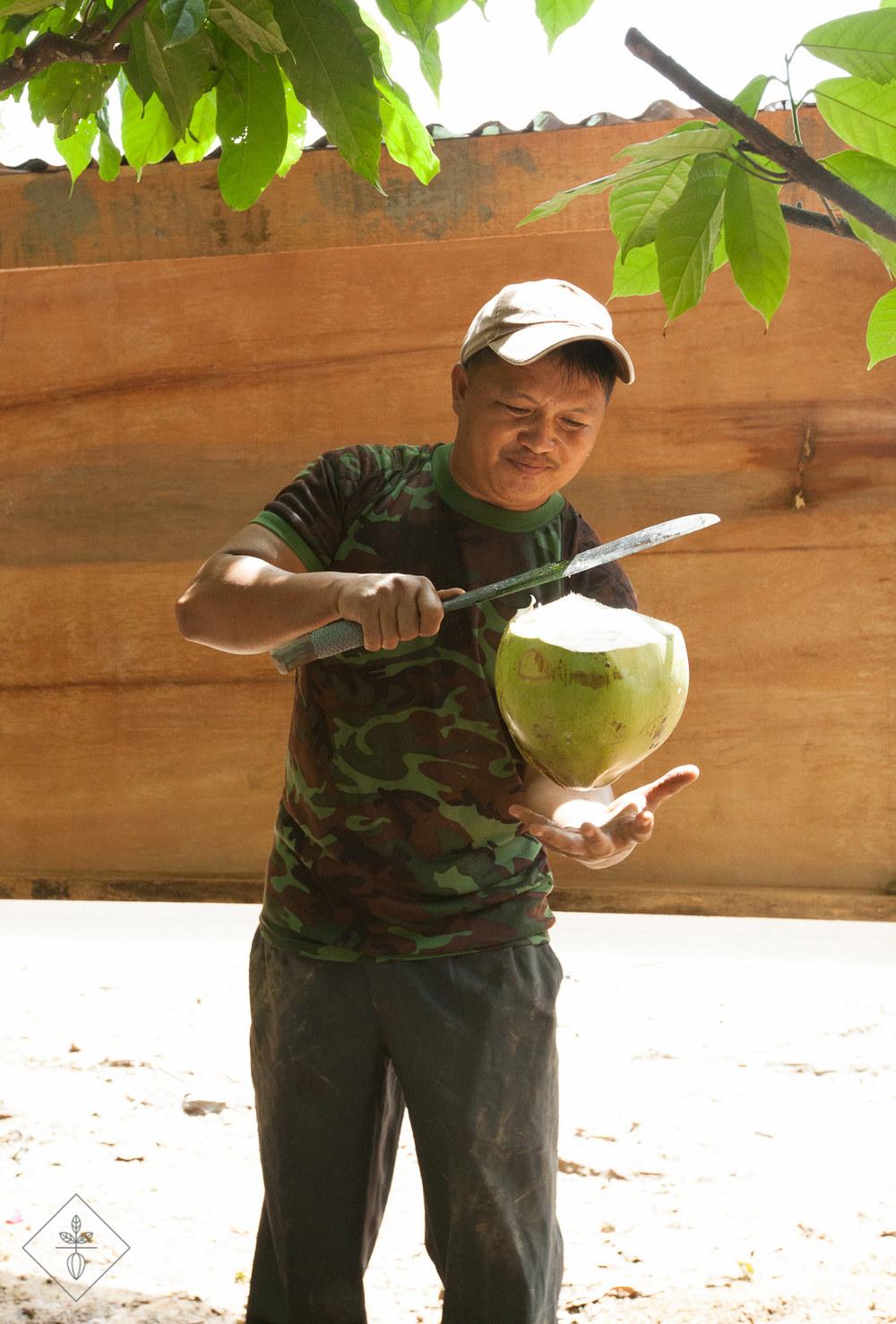 MCB-Ranau-mujin-coconut.jpg