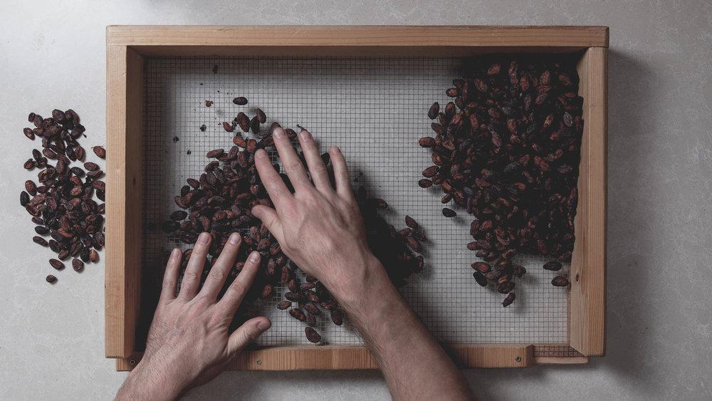 bean-sorting-7.jpg