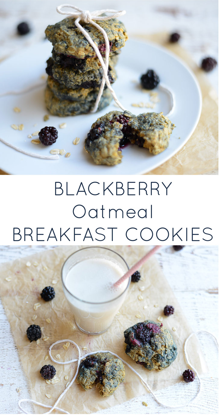 Blackberry Oatmeal Breakfast Cookies. The perfect, healthy breakfast treat for home or on the go. Naturally gluten-free, dairy-free, refined sugar-free and nut-free!
