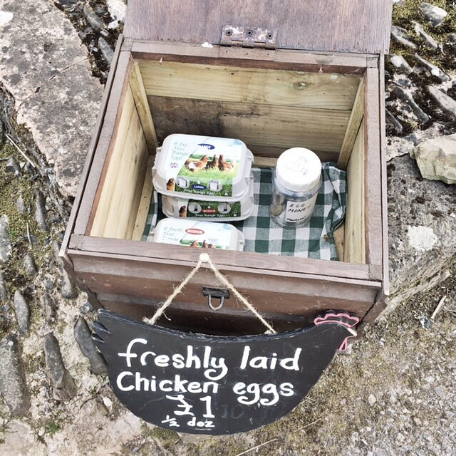 Saw this egg box the other weekend whilst we were in Devon. Is it not just the cutest thing? Made me feel very nostalgic and wholesome. Bought half a dozen and they were just the tastiest eggs. #darlingweekend #lovethelittlethings #eggs #countrylife #simplepleasures #darlingmoment #nature_lovers  #countryside #thewaylifeshouldbe #eggsnthings #eggs #gogreen #sustainableliving #ethical #eco #sustainable
