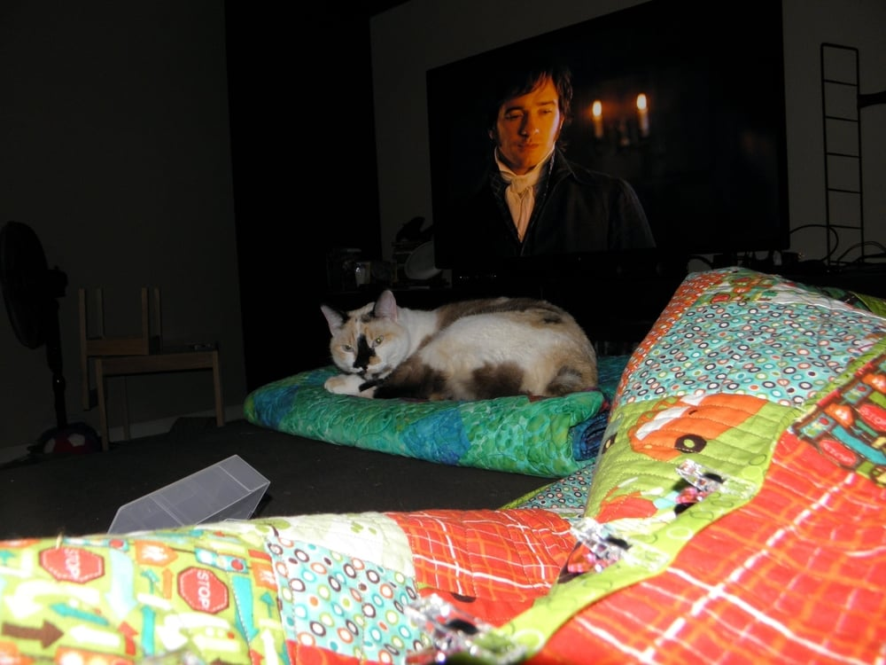 I moved her so I got the stink eye.