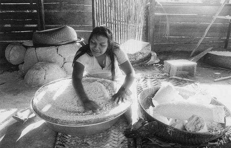 Tradicional processamento da mandioca