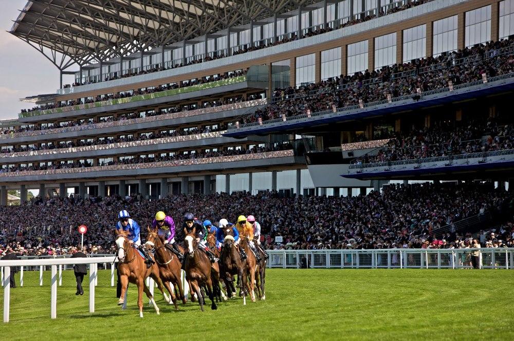 Ascot-Racecourse-House-race.jpg