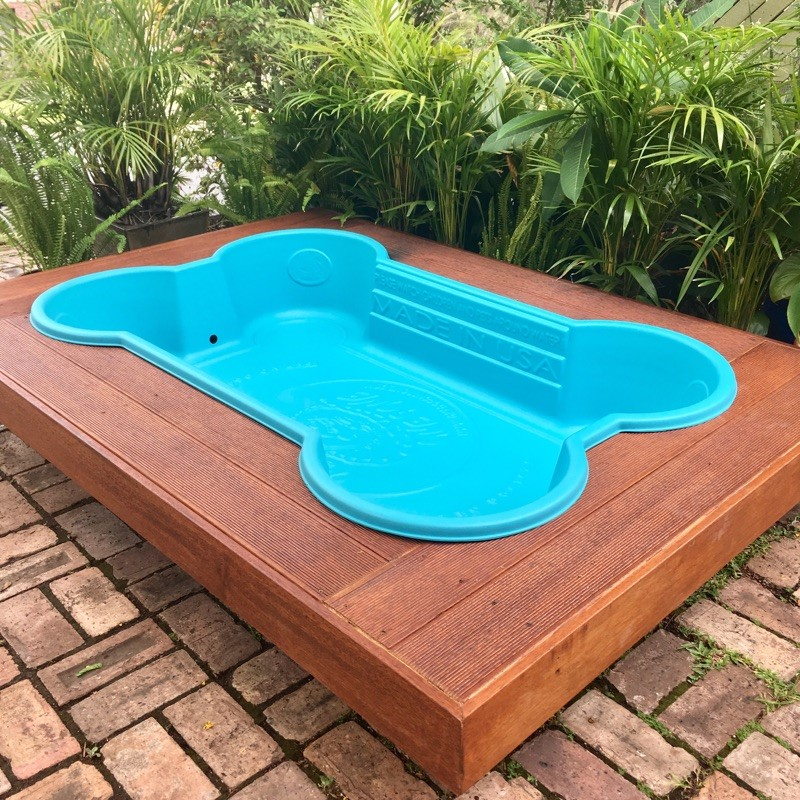 blue dog pool and deck