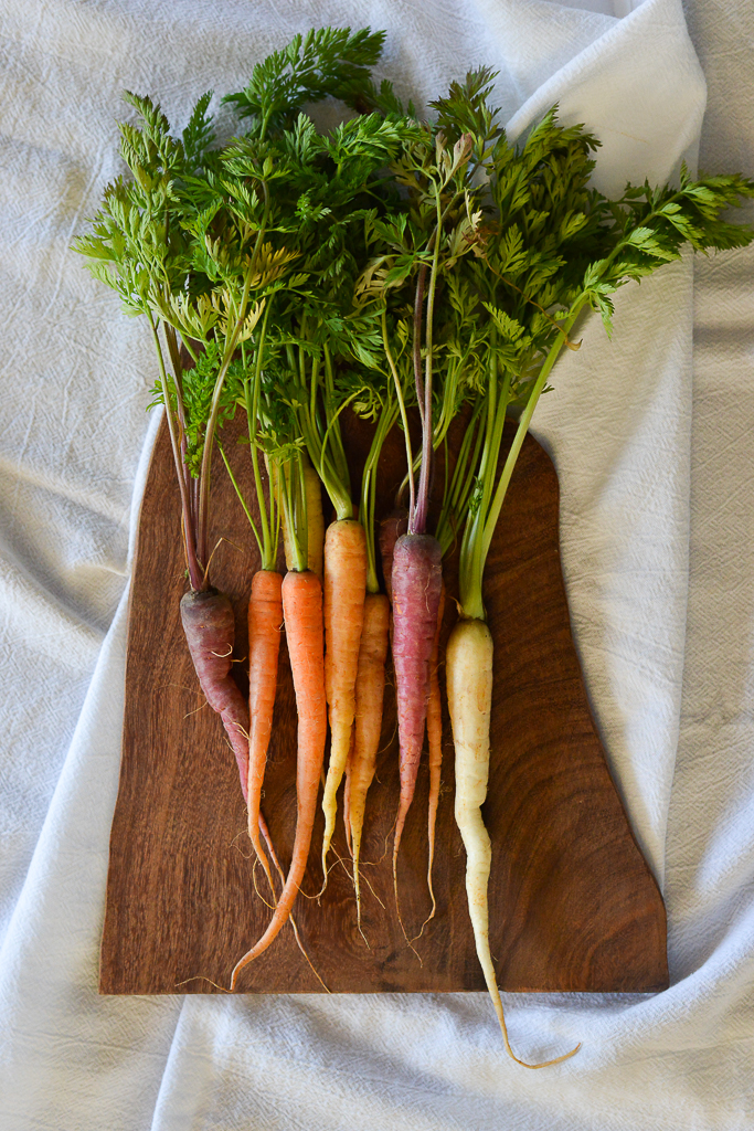 Heirloom carrots.JPG