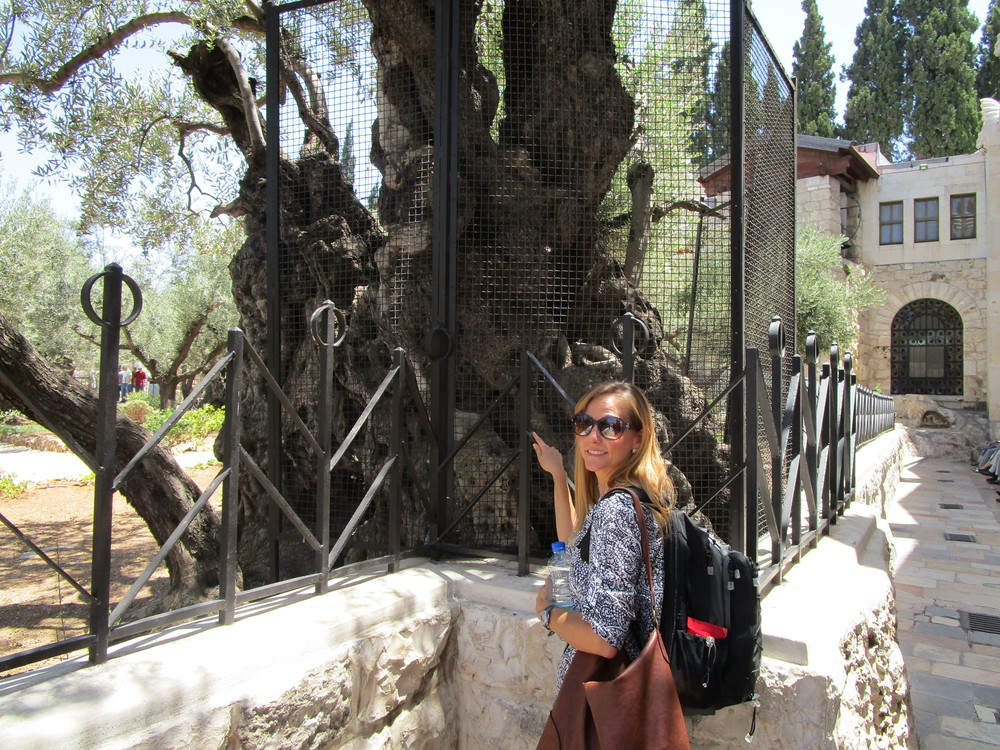 My love, Loretta, standing near the garden. This olive tree is estimated to be nearly 5-6,000 years old. We know with absolute certainty that this tree was there the night Jesus prayed, wept and was arrested.