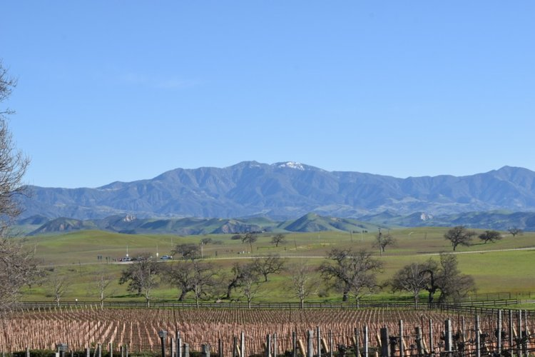 <b>SIP ON THIS JUICE</b> Santa Barbara County Wine Tasting Travel Tips