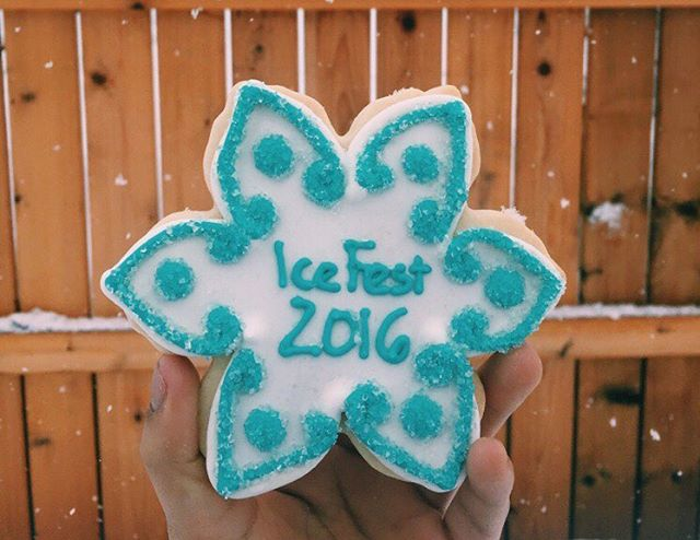 Throwback to last years Ice Fest! ❄️💙 • • • • • #icefest #festival #cookies #decoratedsugarcookies #decoratedcookies #pretty #yummy #delicious #yum #cute #winter #washington