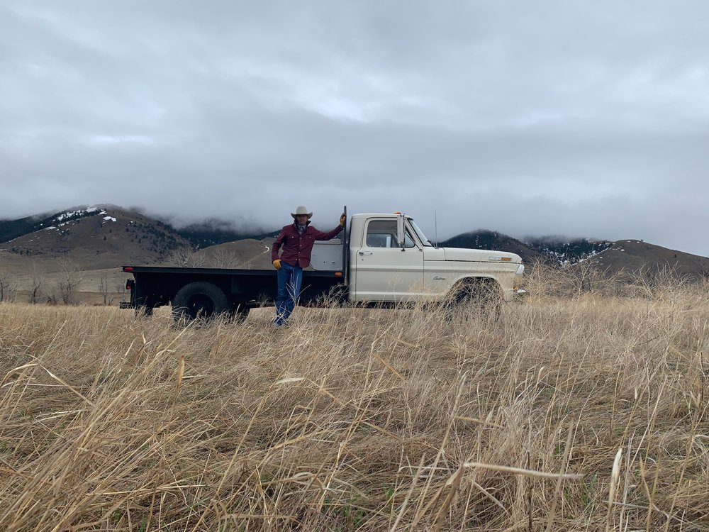 Black Bear Brand in Montana