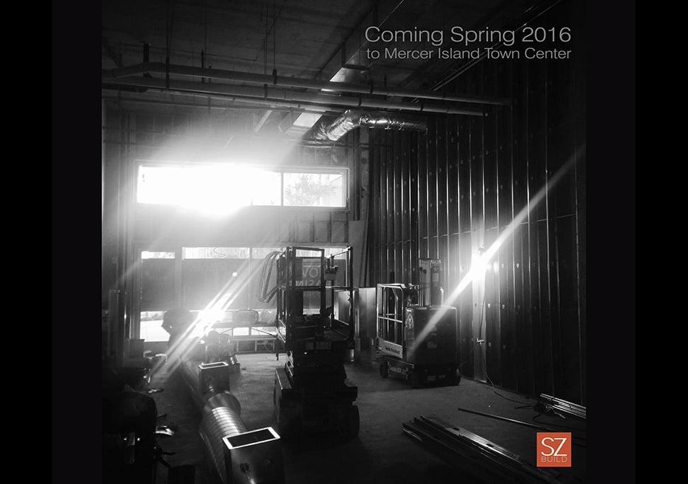 SZ_spring16.jpg