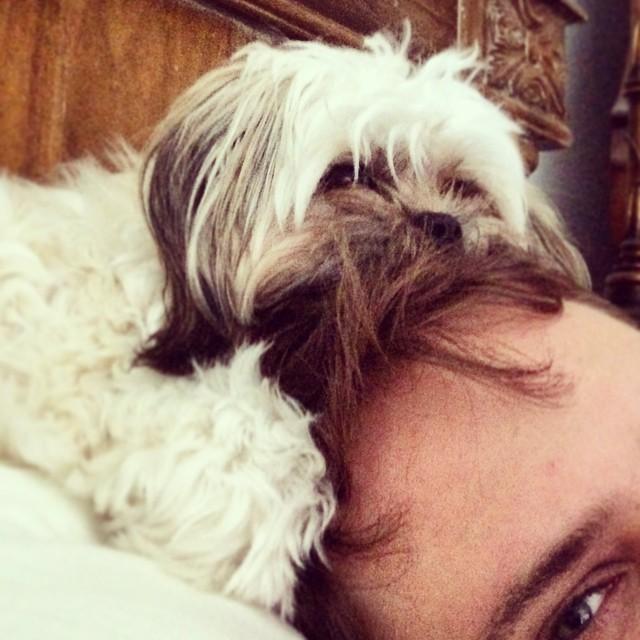 Snuggle time ☺️  #lilbibi @lilbibiboo