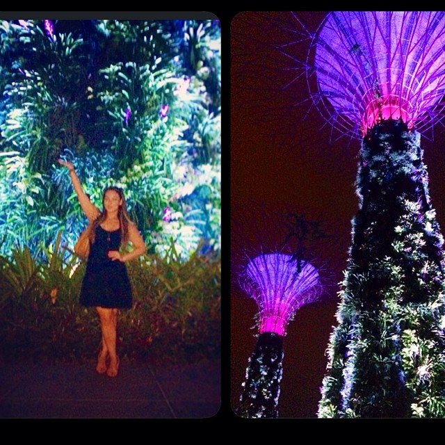 Robot Trees 👾🌳📱🌲📡🌴🔌  #totallynormal #singapore   @pfrawlz @zacksafe14  (at Gardens by the Bay)