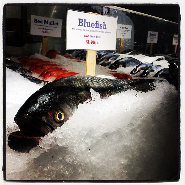 One fish, two fish, red fish….    @chelseamarket #bluefish (at The Lobster Place)