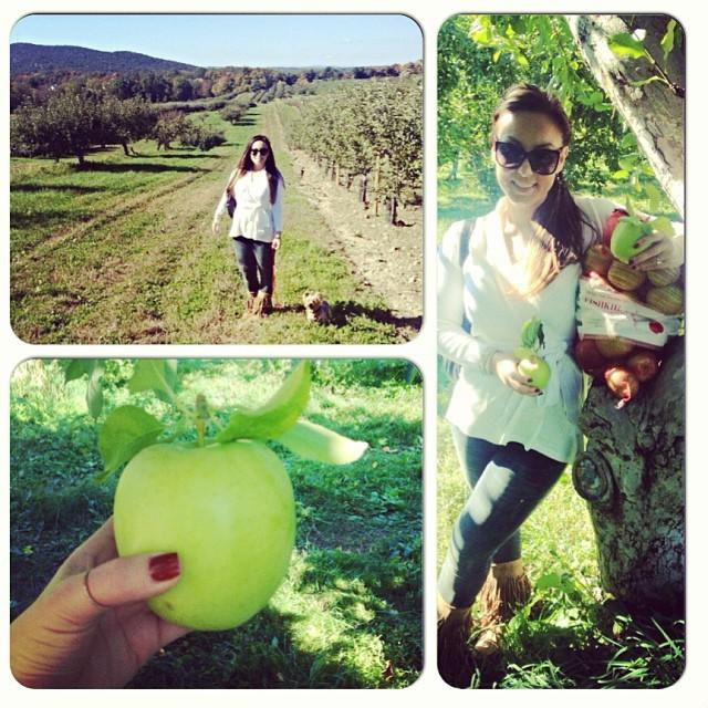 #applepicking #yum warm weather #fall  (at Fishkill Apple Farm)