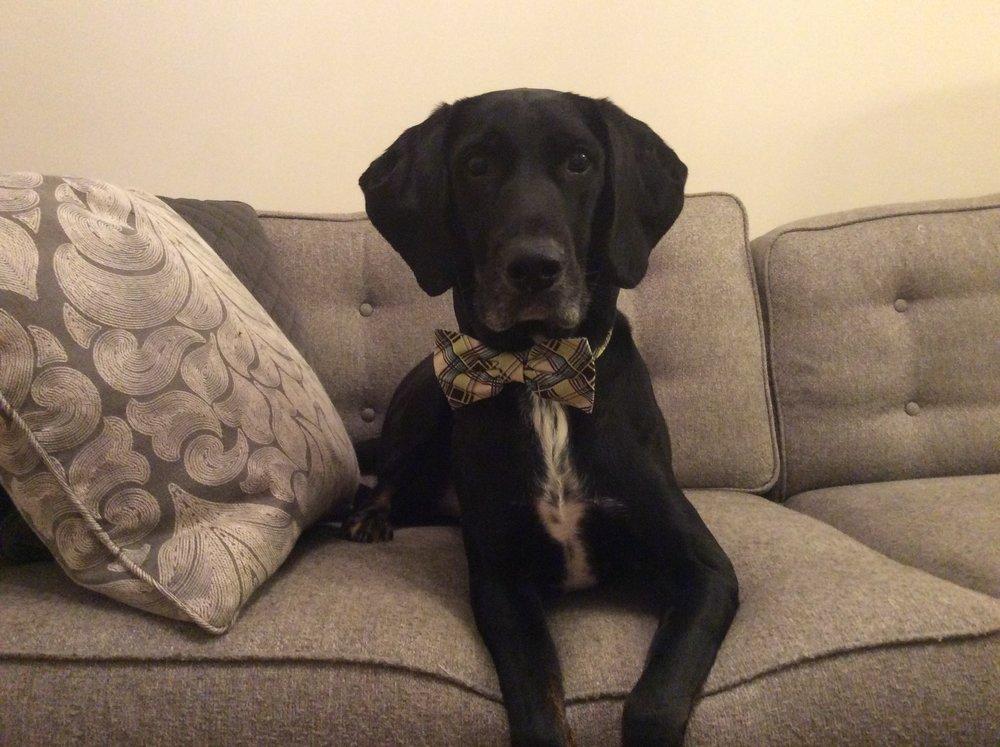 Brody tie.jpg
