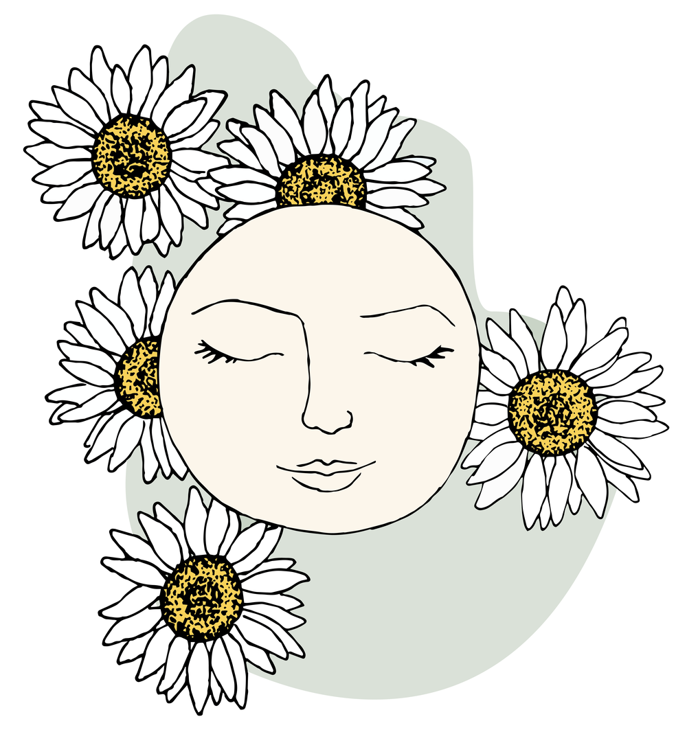 daisysun2-lowerweb-01.png