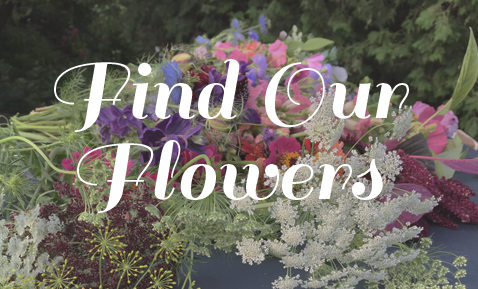FindOurFlowers.png