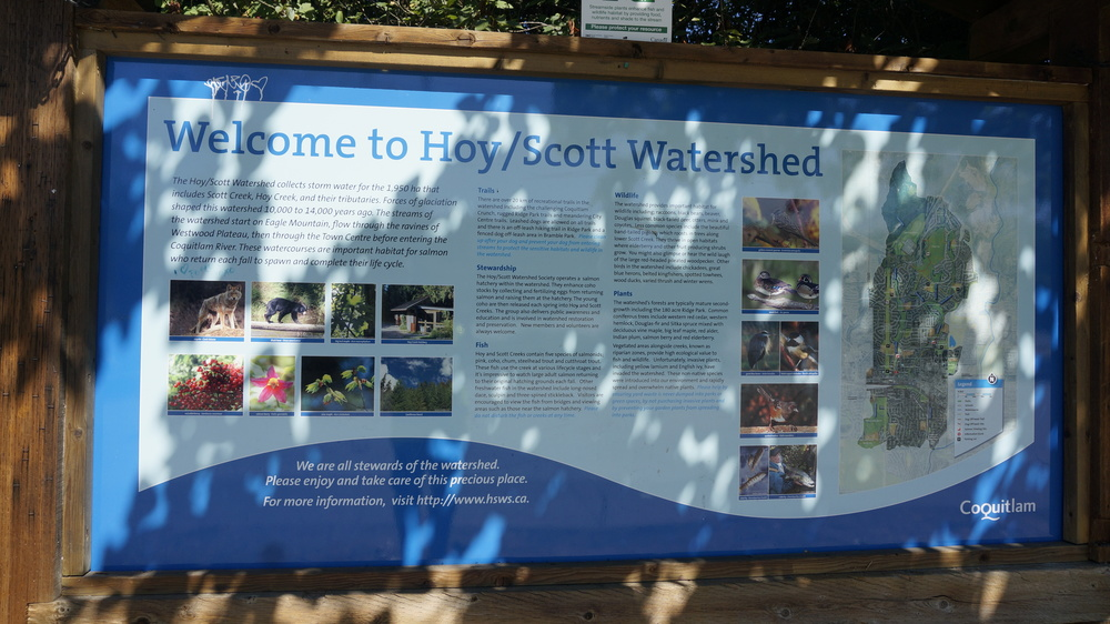 Click this photo to read more about the Watershed
