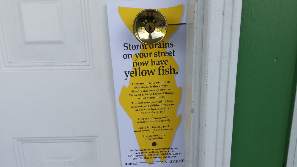 An educational pamphlet will be left on the door in areas where stenciled fish have been placed. (Photo: Robbin Whachell)