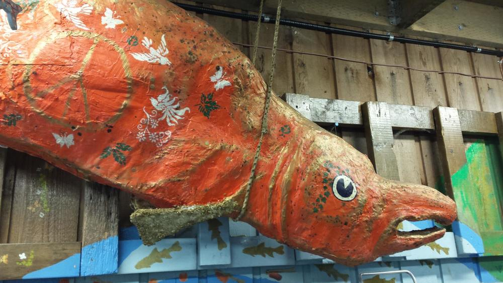 A huge paper mache coho salmon by Patricia Gaspar hangs in our Capilano trough room