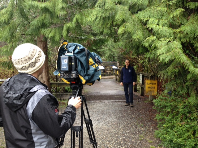 Shaw TV on location at Hoy Creek Hatchery with Robbin Whachell / HSWS director. (Photo: Keith Kozak/ HSWS)