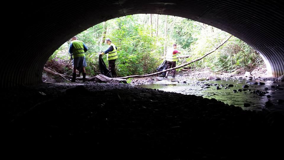 Hoy-Scott Watershed volunteers clean trash in Hoy Creek during the summer
