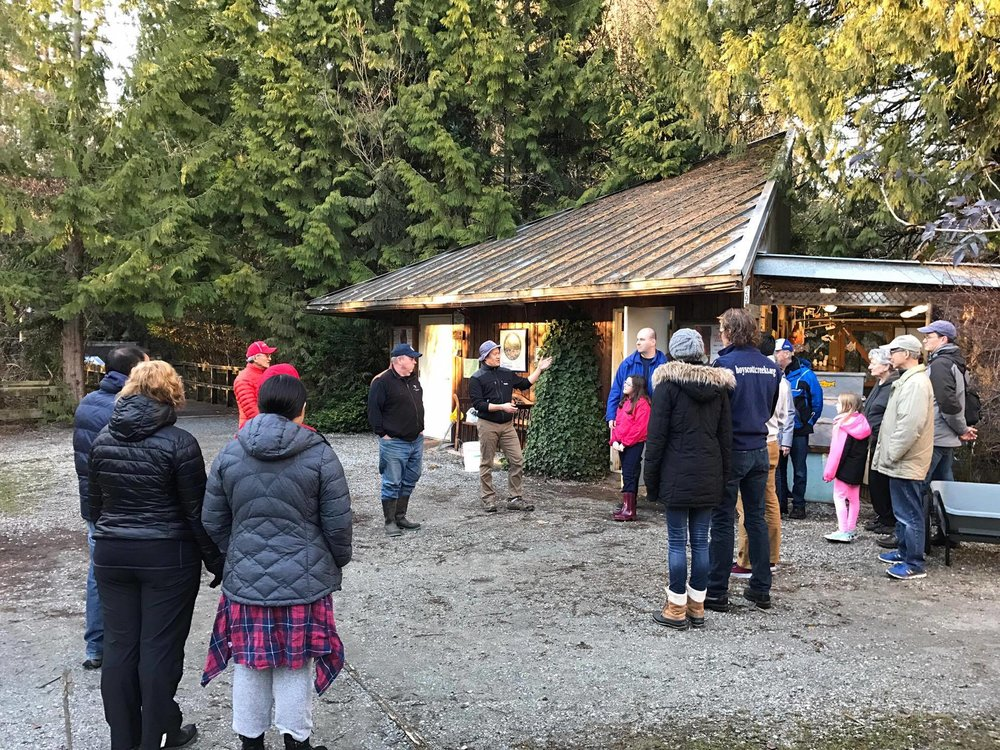 HSWS members met at dusk to release the chum salmon fry. Rodney Lee, hatchery manager (seen center) provides direction.