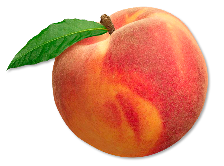 Home Of The Best Peaches